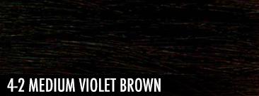 4-2 medium violet brown